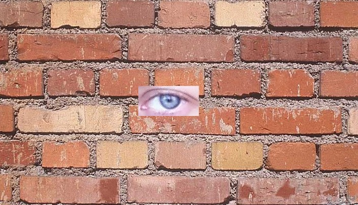 Brick Wall eye